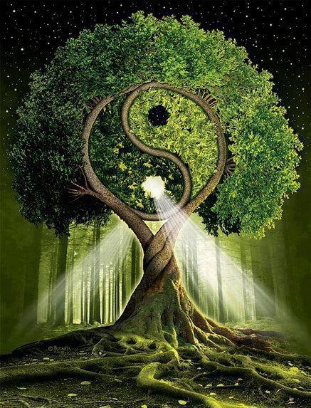 Resultado de imagem para DESPERTANDO O CONHECIMENTO - Como antigos ensinamentos taoistas podem ajudar a manifestar perfeição e equilíbrio? Conheça Lao Tzu